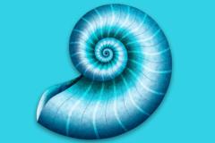 DEVONthink Personal 特别版 – Mac多任务文件档案管理