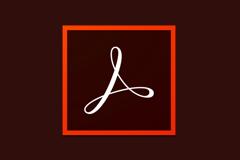 Adobe Acrobat Pro DC 2019.021.20047 特别版 - PDF编辑和阅读软件