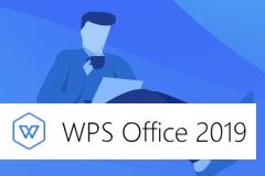 WPS Office 2019 11.8.2.11.8.2.8506 专业增强版 / 政府专业版