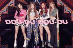 【日语】BLACKPINK - DDU-DU DDU-DU (JP Ver.) – Single(2018/K-Pop/iTunes Plus)