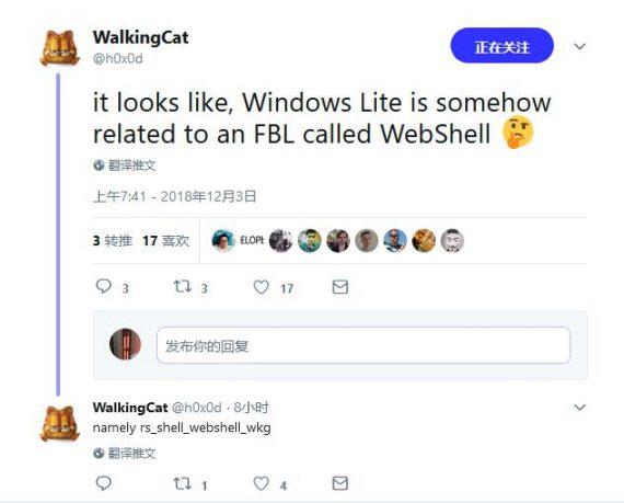 aaf13eadd26e0c1 570x459 微软正开发轻量级系统 Windows Lite Windows