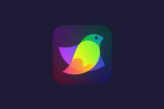 Amadine 1.0.4 特别版 – Mac的矢量图形设计软件