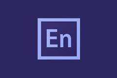 Adobe Media Encoder 2020 v14.0.0.556 特别版